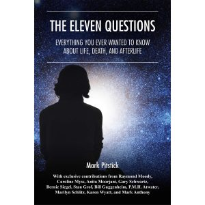 eleven-questions-book